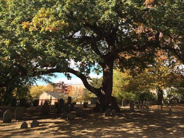 20 - Salem Graveyard