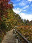 4 Scenic Walk
