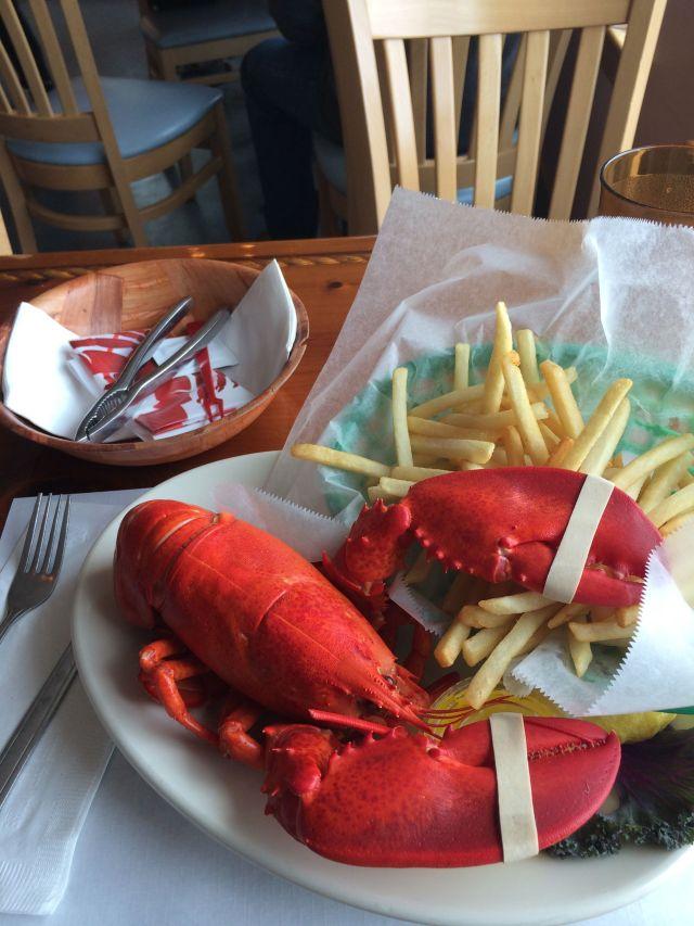 8 - lobster 1
