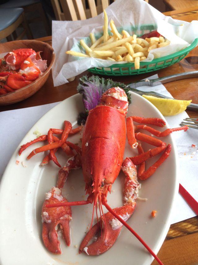9 - Lobster 2